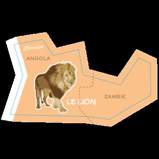 magnet-afrique-lion