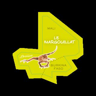 magnet-afrique-margouillat