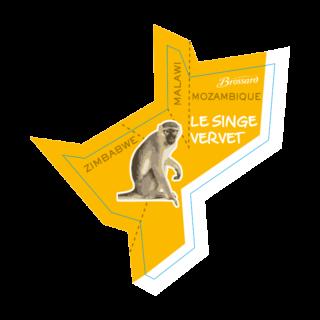 magnet-afrique-singe