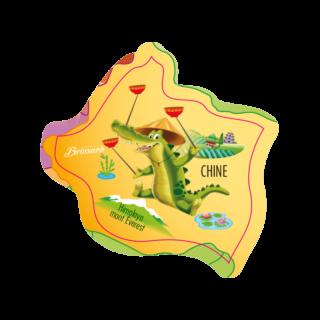 magnet-asie-crocodile