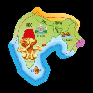 magnet-asie-lion